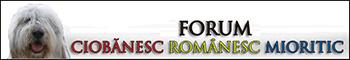 Ciobanesc Romanesc Mioritic